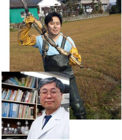 埼玉医科大学和久教授